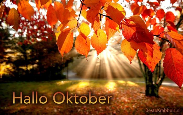 Maandoverzicht september