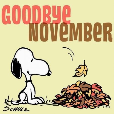 Maandoverzicht november: besparen op de kleine dingen